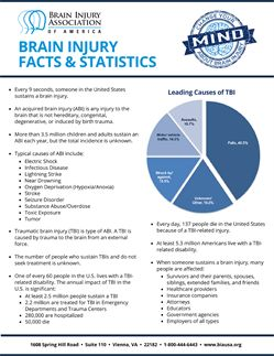 Brain Injury Facts and Statistics